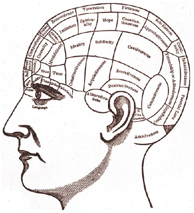 Figure 12: The well-demarcated phrenological regions: a figment of ingenuity that laid the foundation of the concept that different regions of the cerebral cortex possess different functions.